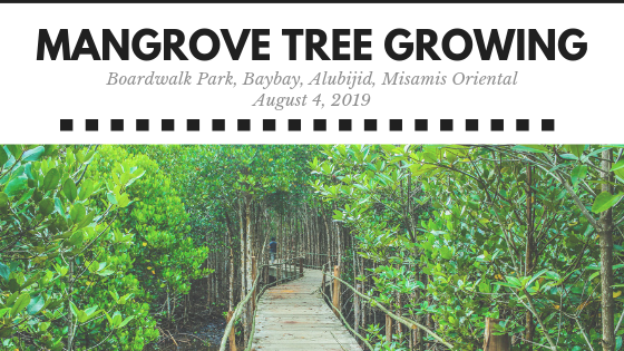 Protect Aquatic Resources by Helping Grow a Mangrove Tree